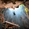 Swooping Rays - Birds At The Batu Caves